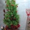 O Natal e as riquezas do empobrecimento
