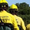Em verão de seca severa, Governo asfixia sapadores florestais