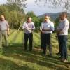 Avultadas perdas agrícolas em Lafões e Sever do Vouga exigem intervenção do Governo