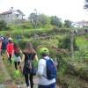 Mais de 70 participantes no percurso Nª. Srª. das Colmeias em Vila Maior